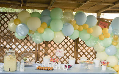 Baby shower de Sergio